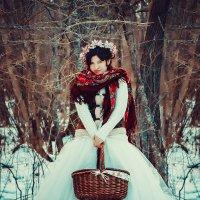 Зимняя сказка :: Зинаида Дрим