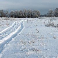 Встречая март проехала зима... :: Лесо-Вед (Баранов)