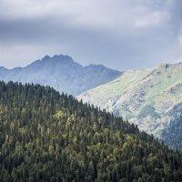 PRO горы Абхазии :: Yuriy Puzhalin