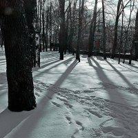 в конце февраля :: александр