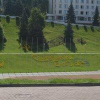 Беларусь :: Светлана Ларионова