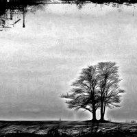 Жизнь - прекраснейшая из выдумок природы....... :: Tatiana Markova