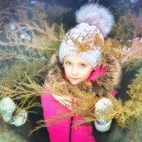 ... Зимняя сказка ... :: Светлана Держицкая (Soboleva)