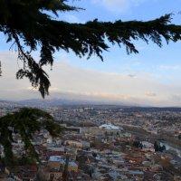 Чудесный вид на Старый и Новый Тбилиси. :: Anna Gornostayeva