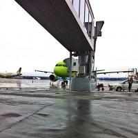 В  Аэропорту. :: Виталий Селиванов