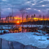 Весна наступает, или закат на болоте. :: Фёдор. Лашков