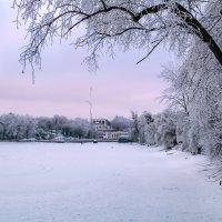 Зимним утром.. :: Юрий Губков