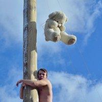 Без медведя... :: Юрий Анипов