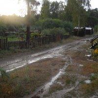 после дождя :: Александр Попков