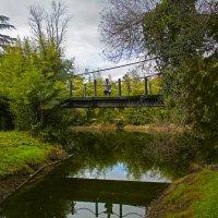 Мост к старой канатной дороге приморском парке. Старая Гагра. :: Элина Любицкая (Одинова)
