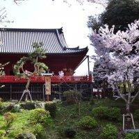Храм Kiyomizu Kannondō Токио :: Swetlana V