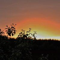 Летнее закатное :: Николай Масляев