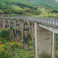 Мост через Тару :: Сергей Цветков