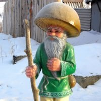 Старичок-боровичок. :: nadyasilyuk Вознюк