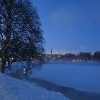 Зимний туман в Стокгольме :: Елена