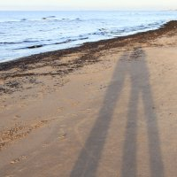 Силуэты на песке :: Gennadiy Karasev