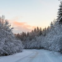 Зимняя дорога :: Владимир Лазарев