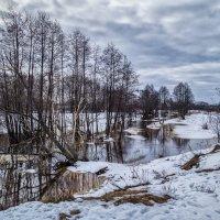 Ну вот и Весна 2 :: Андрей Дворников