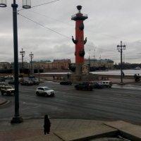 Петербург :: Наталья Куклина