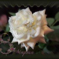 Наступит утро, и свои вмиг лепестки распустит роза... :: Людмила Богданова (Скачко)