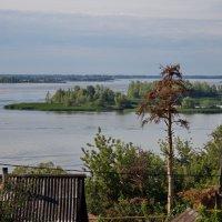Волга :: berckut 1000
