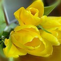 Сегодня, в день  8 МАРТА всех милых женщин поздравляю! :: Анна Приходько