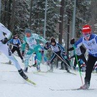 Лыжня России в Ханты-Мансийске. :: Lu Clever