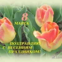 8 МАРТА :: Тамара (st.tamara)
