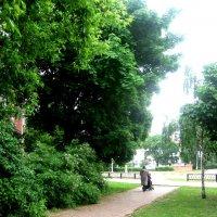 Летом в городе :: Елена Семигина