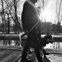 Весна :: Светлана Шмелева