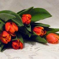 Тюльпаны :: nadyasilyuk Вознюк