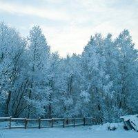 Зима на краю города :: Светлана Малкина
