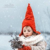 Зимний букетик. :: Elena Klimova