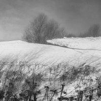 Весна... :: Фёдор Куракин