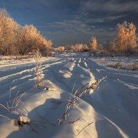 Январской утренней порой... :: Александр Попов