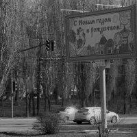 А ты выбросил елку? :: Юрий Новичков