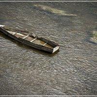 Вятка, река Быстрица. :: Владимир Белозеров
