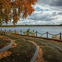 Осень не набережной... :: Александр Никитинский