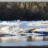 Ледяные торосы. :: Paparazzi