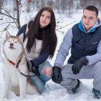 Husky :: Сергей