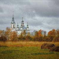 Осень, пасмурно... :: Александр Никитинский