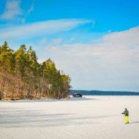 Зимняя прогулка по озеру :: Кристина @BeshenBelka