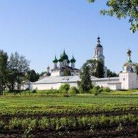Толгский монастырь в Ярославле. :: Владимир Безбородов