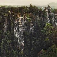 Саксонская Швейцария :: Анна Аринова
