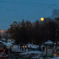 Луна :: Arthur Kayumov