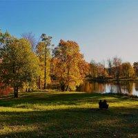 Милые грёзы у осеннего пруда... :: Sergey Gordoff