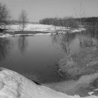 весна... :: Владимир Носов
