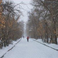 Снег идёт :: Евгений Карский