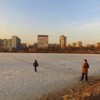 Идти или не идти по льду? :: Андрей Лукьянов