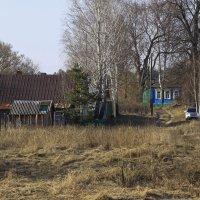 в деревне :: оксана